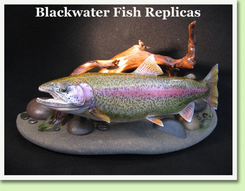 Blackwater Fish Replicas