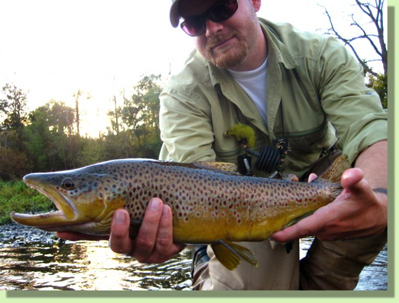 Caney FOrk Trophy Brown Trout Fly FIshing GUides Knoxville Tennesee