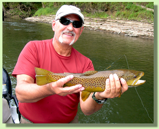 Trophy Brown Trout Guided Fly Fishing In Tennessee