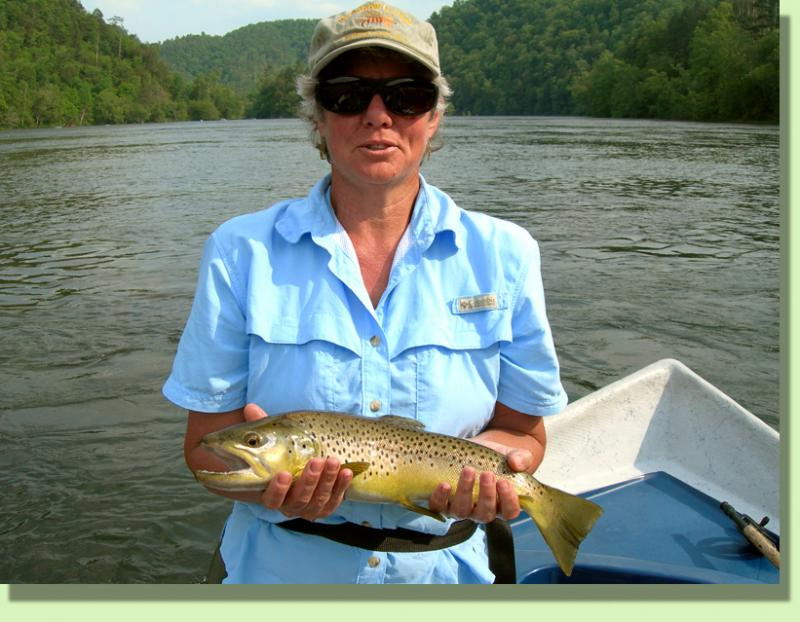 Hiwassee River Fly Fishing Guide Service