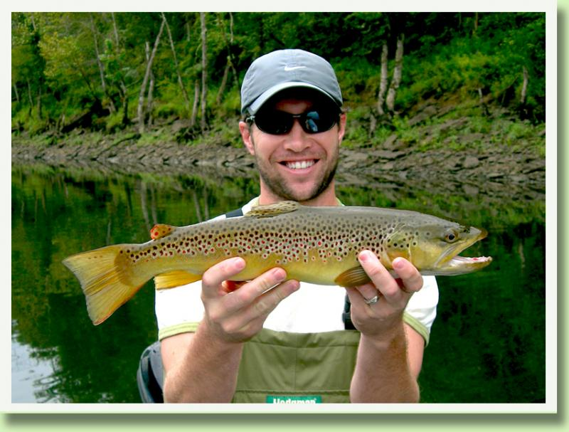 Trophy Brown Trout Southeastern Guide Rocky Cox near Knoxville Cumberland
